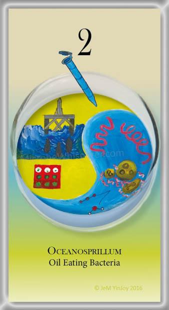 TUBESOceanospirillumOil-Eating Bacteria